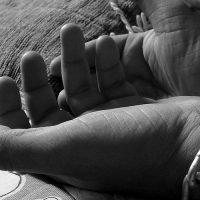 Human-Trafficking-via-Pixabay-960x500